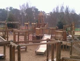 wills-park-2-c34348dbf142478385096070e361e95eb549d6e7